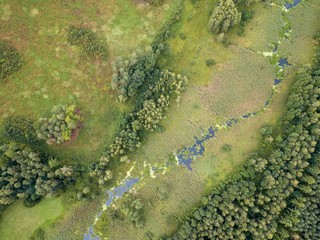 Beautiful green drone landscape with small wild river in forest