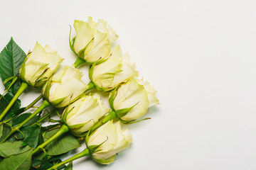 Bunch of white roses on white background. Flat lay