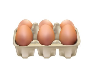 eggs in a carton container isolated