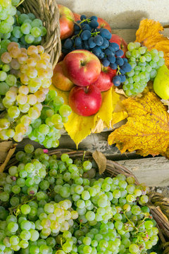autumnal harvest still life with apples, pears, grapes, nuts and berries in foliage on wooden board. vertical