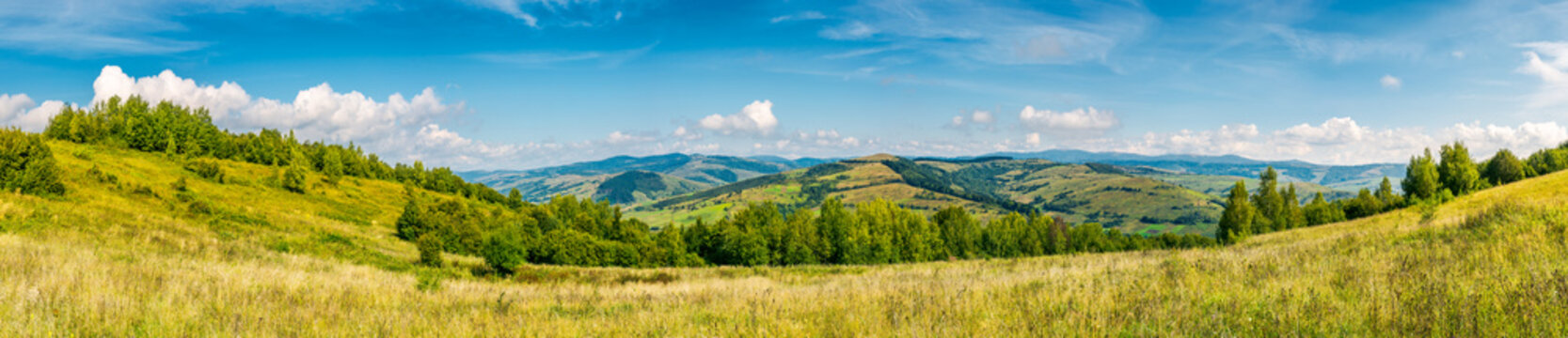 autumnal panorama of mountainous countryside. grassy meadow on a slope. rural fields on the  hill in the distance