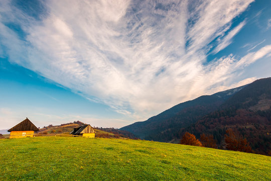 village outskirts in mountains. trees with red foliage on grassy hill. wonderful autumn landscape with beautiful sky