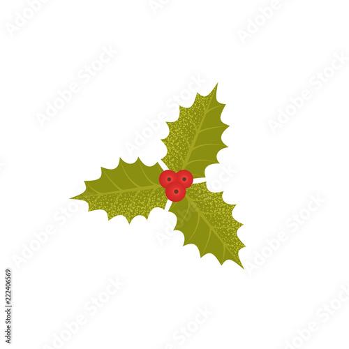 Christmas Holly Cartoon.Christmas Holly Berry Icon Vector Green Mistletoe Leaves