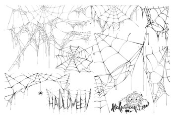 Set of spider web and text of holiday halloween