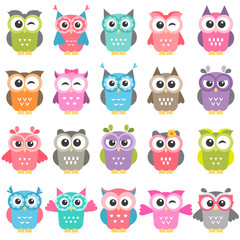 set of colorful owls isolated on white