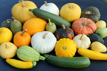 Squash and pumpkins.