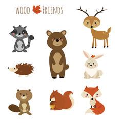 set animali del bosco