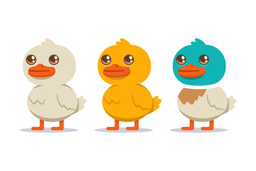 White, yellow and colored duck set. Vector cartoon bird character isolated on white background.