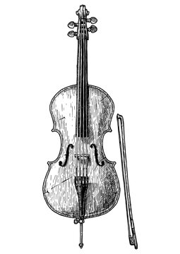 Vintage illustration of Cello