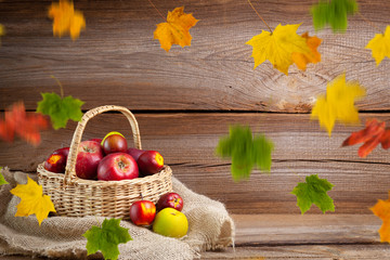 autumnal background before wooden board