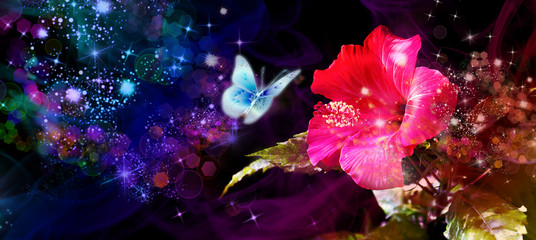 night blooming rose hibiscus witch flying butterfly