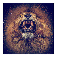 Löwen Kopf Vektorgrafik