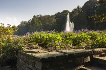Stadtgarten von Bottrop im Spätsommer