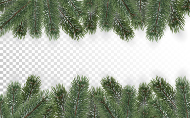 Detailed Christmas tree branches background on transparent background. Christmas decoration. Realistic fir tree border. Vector New Year design for cards, banners, flyers, party posters, headers.