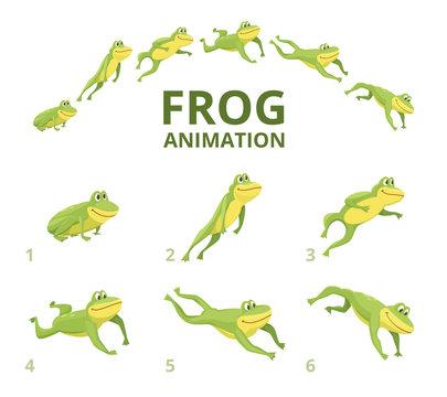 Frog jumping animation. Various keyframes for green animal. Vector frog animation, jump amphibian animated illustration