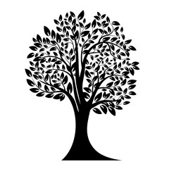 Black tree silhouette. Isolated on white background. Vector