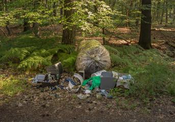 Wilde Müllkippe mit Sondermüll und Elektronikschrott im Wald - Wild dump with hazardous waste and electronic scrap in the forest