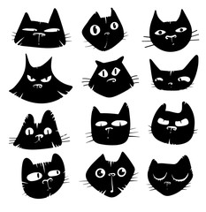 faces of cats in black and white