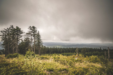 Wilderness landscape in cloudy weather overcast