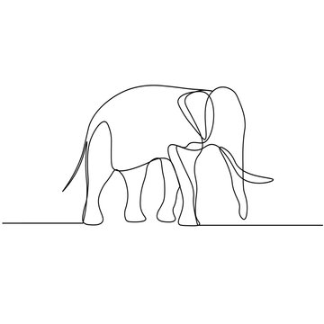 Continuous line drawing. Elephant symbol. Logo of the elephant. Vector illustration