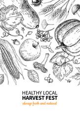 Harvest festival. Hand drawn vintage vector frame illustration with vegetables, fruits, leaves. Farm Market poster