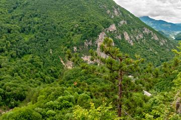 Mountain landscape in Montenegro