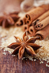 Christmas Spices. Star anise and cinnamon sticks on brown sugar. Selective Focus. Close up.