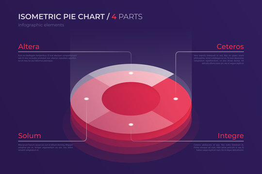 Vector isometric pie chart design, modern template for creating