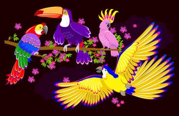 Fantasy illustration of cute fairyland parrots on dark background. Modern print. Vector cartoon image.