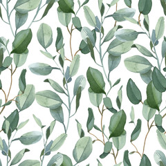 Seamless pattern of green eucalyptus leaves on white background