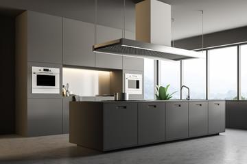 Gray modern kitchen interior, island side view