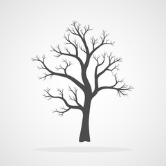 Tree icon. Vector illustration.