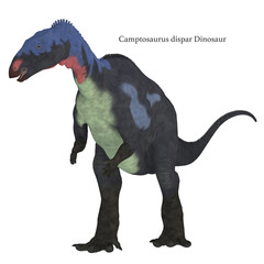 Camptosaurus Dinosaur on White with Font