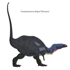 Camptosaurus Dinosaur Tail with Font