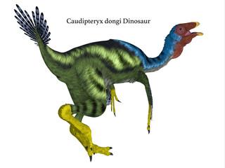 Caudipteryx Dinosaur Tail with Font