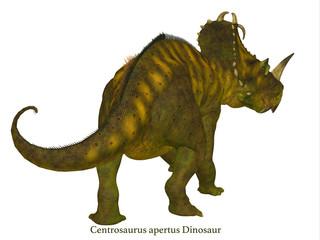 Centrosaurus Dinosaur Tail with Font