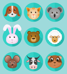 Pet icons flat set Creative vector illustration