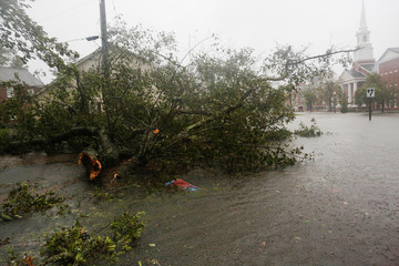 A downed tree blocks a local street during the passing of Hurricane Florence the town of New Bern