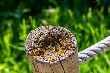 Rustic wooden post against a lush green hillside