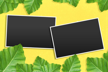 template photo frames with Tropical background