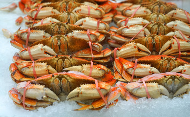 Frozen cooked crab on the ice for sale