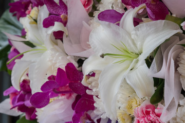 Beautiful flowers at the flower market in Thailand.