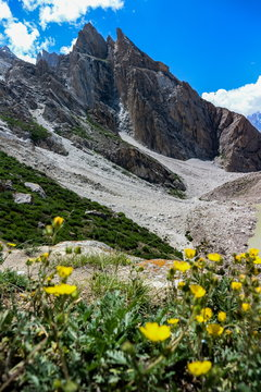landscape of Karakorum mountain in summer, Khuspang camp, K2 Laila Peak and Gondogoro Glacier