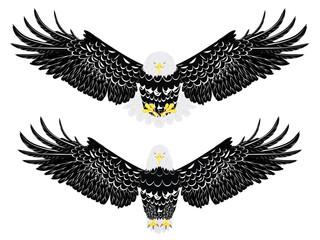 Stylized bald eagle