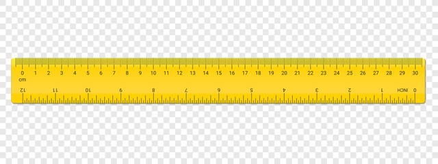 Ruler centimeter and inches double side scale Wall mural