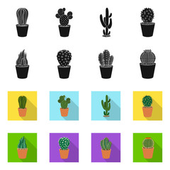 Vector design of cactus and pot symbol. Set of cactus and cacti vector icon for stock.