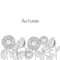 Autumn card of sunflowers. Black and white vector illustration.