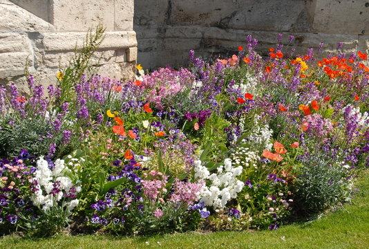 Massif de fleurs multicolores, ville de Vernon, département de l'Eure, Normandie, France