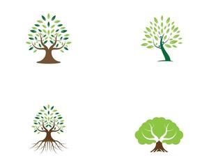 Tree logo vector illustration
