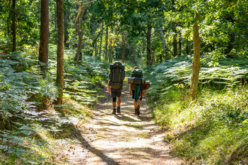 "Two young adults hiking along a straight part of ""Skåneleden"" in Scania, Sweden"